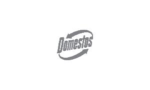 Domestos_mh