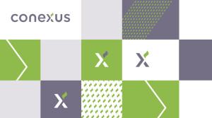 CONEXUS BRAND IDENTITY DESIGN BY VUCA.001