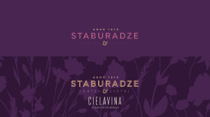 staburadze logo rebranding proposal by vuca.001