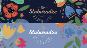 staburadze logo rebranding proposal by vuca.002